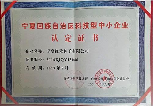 宁夏回族自治区科技型中小企业认定证书